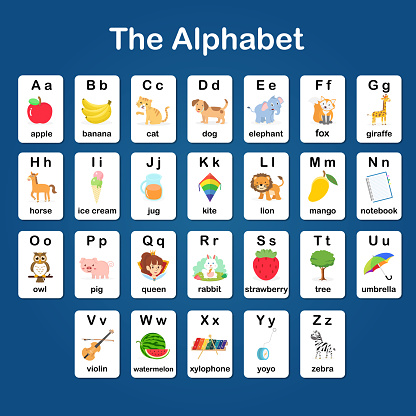 English vocabulary and alphabet flash card vector for kids to help learning and education in kindergarten children. Words of letter abc to z ,each card isolated on white background.