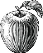 Engraved apple