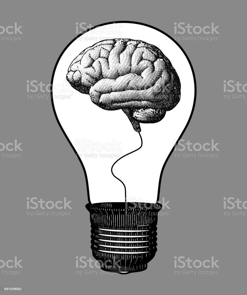 Ilustración de Bombilla Grabada Con Cerebro Dentro De Ilustración y ...