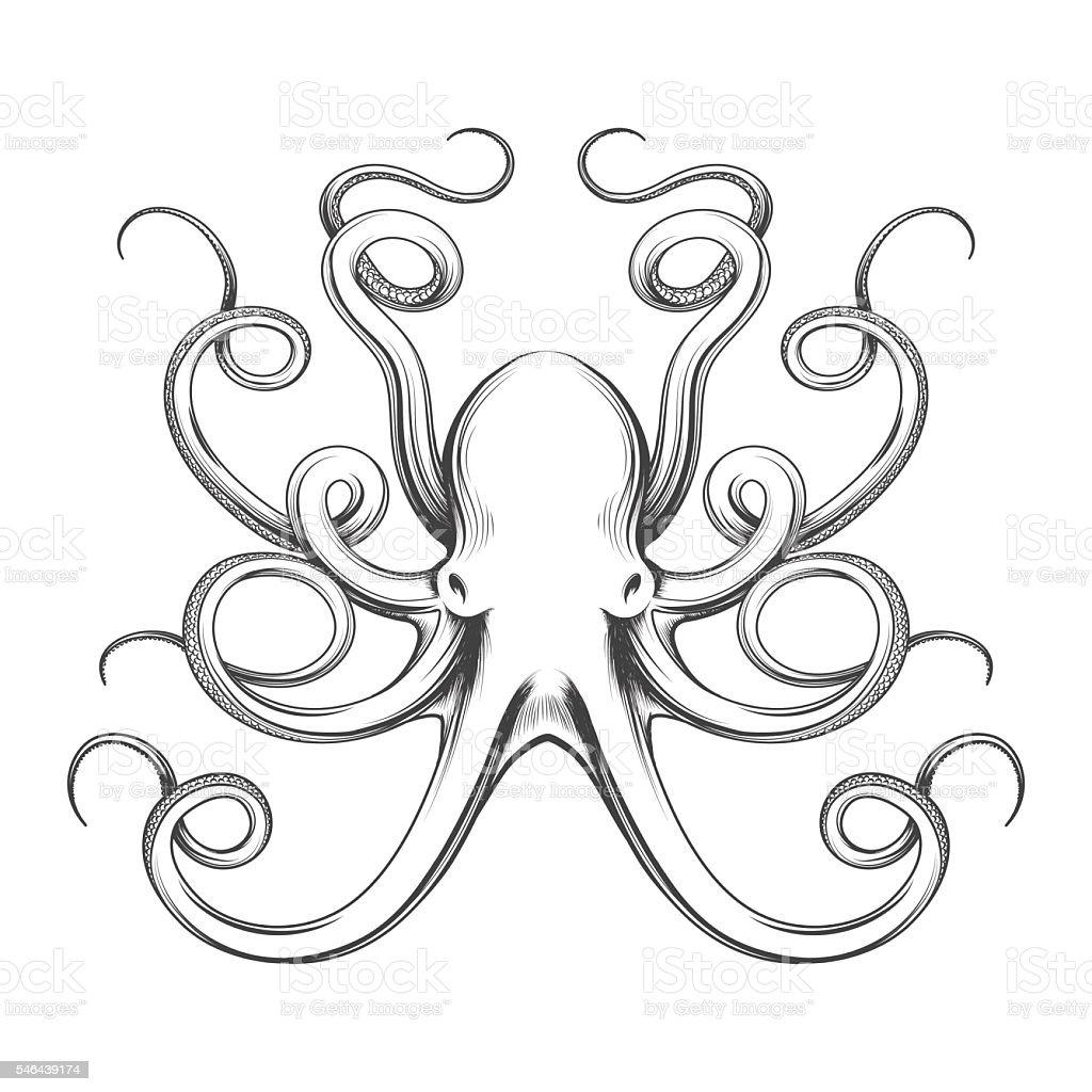 Engraved octopus vector icon vector art illustration