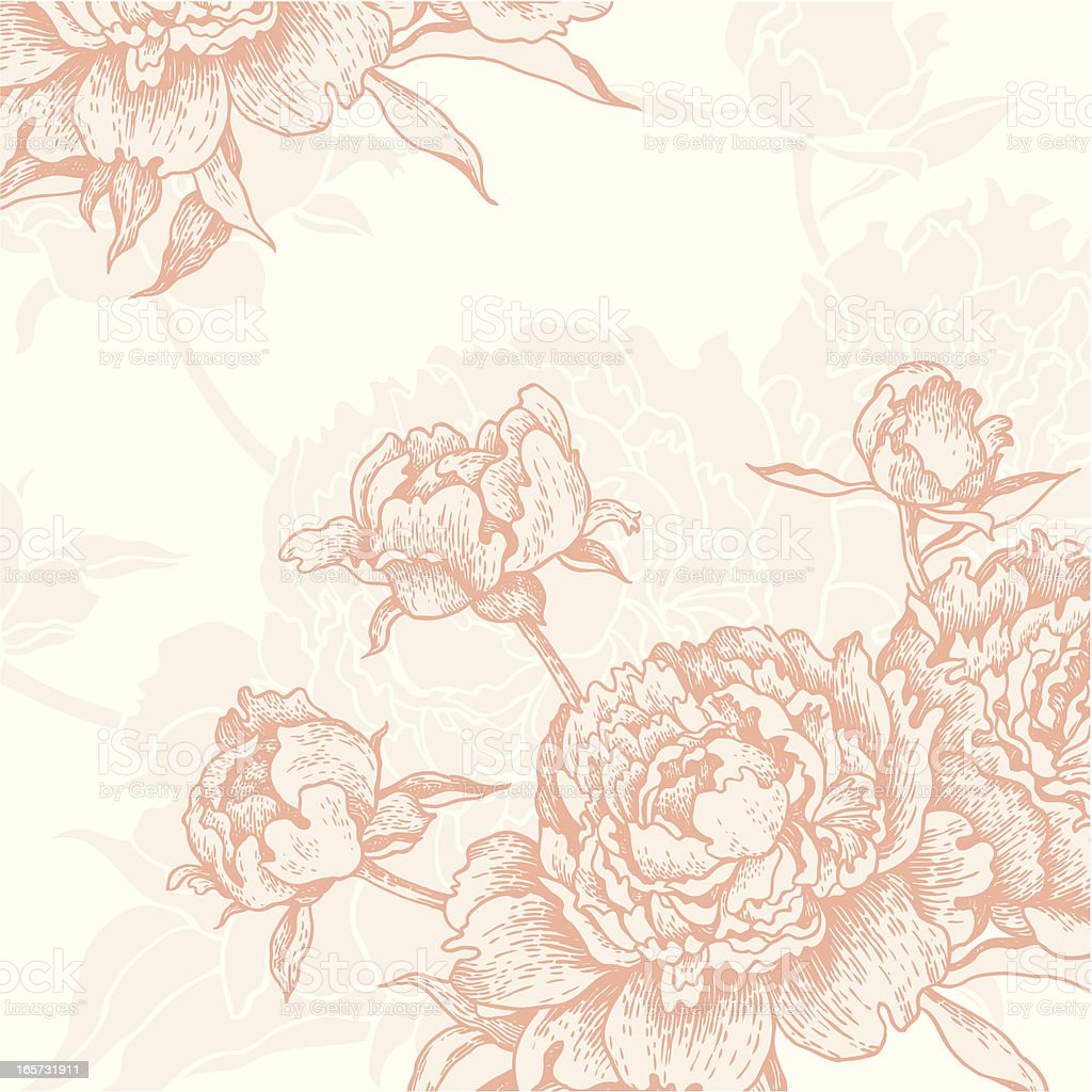 Engraved Peonies background vector art illustration