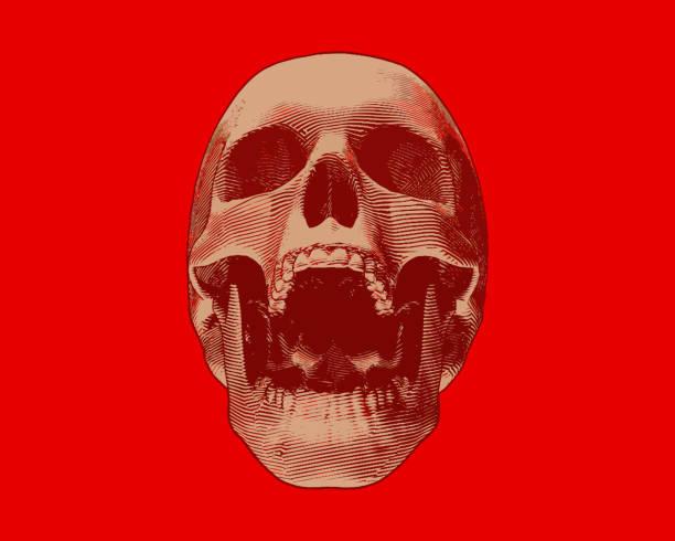 gravur gold schädel abbildung schrei auf roten bg - geistergeschichten stock-grafiken, -clipart, -cartoons und -symbole