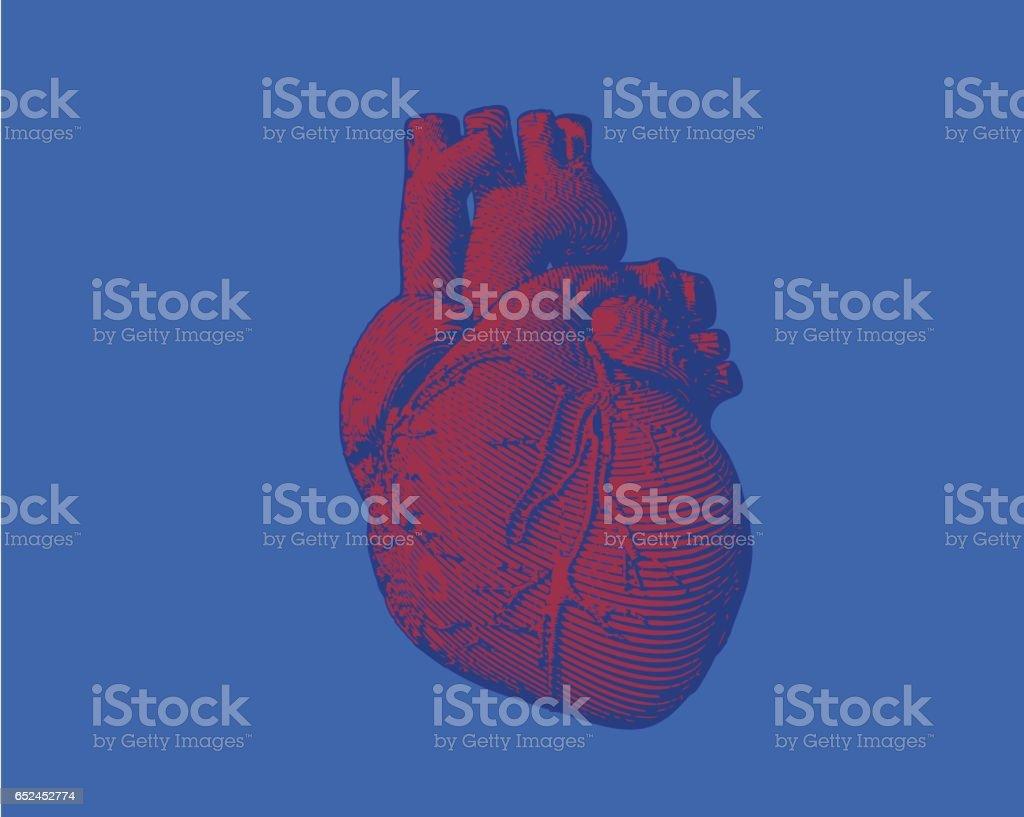 青い BG に分離された彫刻の心図 ベクターアートイラスト
