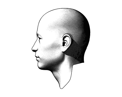 Monochrome engraving drawing bald human head in side view illustration isolated on white background