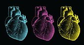 Engraving human heart illustration set isolated on black BG