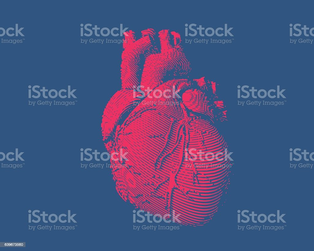 Engraving human heart illustration - illustrazione arte vettoriale