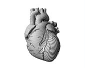 Engraving human heart illustration with black and white color