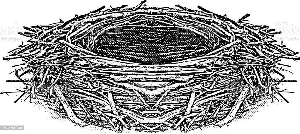 Engraving illustration of an Eagle nest vector art illustration