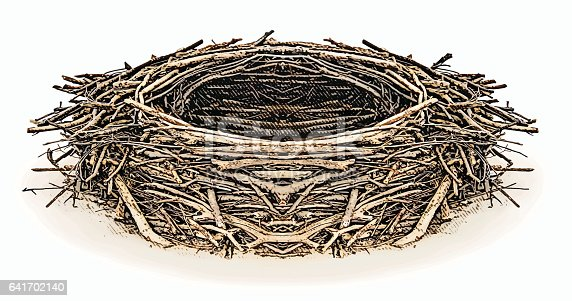 Engraving illustration of an Eagle nest with white background