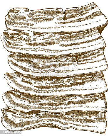 Vector antique engraving drawing illustration of bacon slices isolated on white background