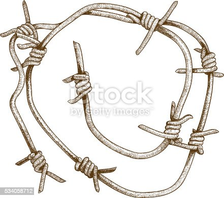 Vector antique engraving illustration of barbed wire piece isolated on white background