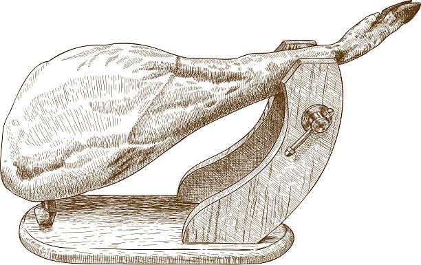 ilustraciones, imágenes clip art, dibujos animados e iconos de stock de engraving illustration of jamon - comida española