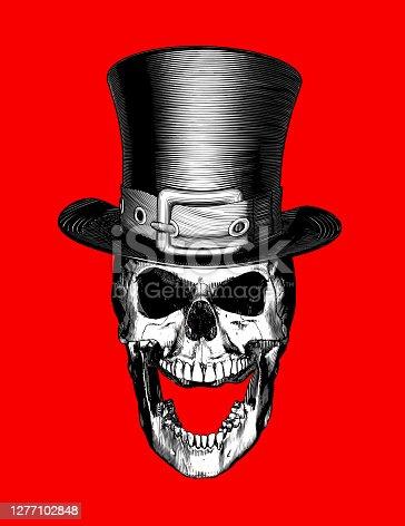 Horseshoe Skull Stock Illustrations – 708 Horseshoe Skull Stock  Illustrations, Vectors & Clipart - Dreamstime
