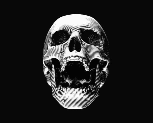 ilustraciones, imágenes clip art, dibujos animados e iconos de stock de cráneo de grabado ilustración grito en bg negro - aparición conceptos