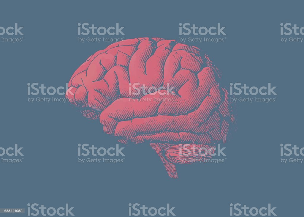 Engraving tint red brain on blue background vector art illustration