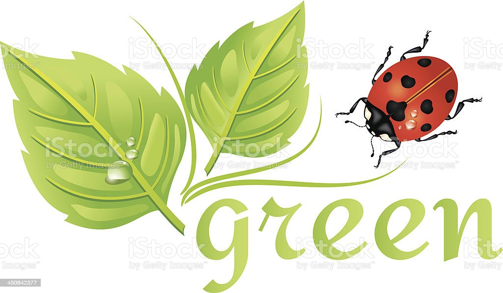 Environment Icon - Recycle Leaves and Ladybug royalty-free stock vector art