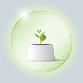 Environmental conservation concept with young plant protected in polygonal sphere shield , vector , illustration