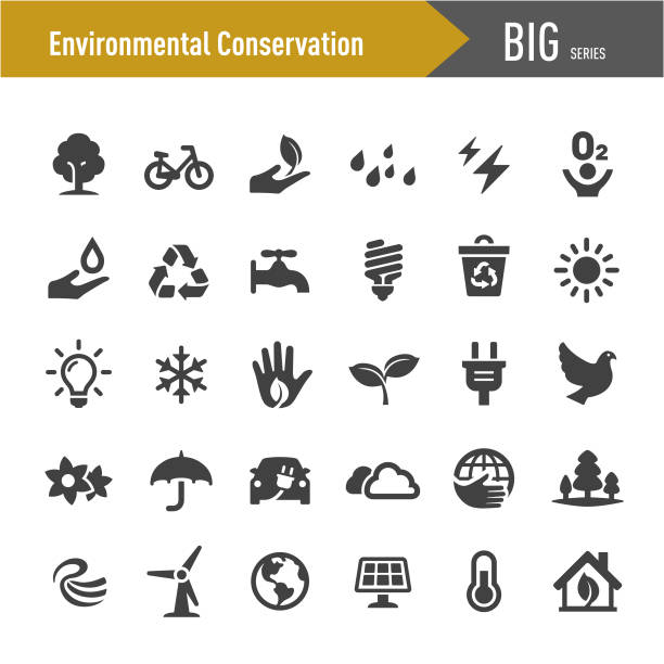 Environmental Conservation Icons - Big Series Environmental Conservation, alternative fuel vehicle stock illustrations