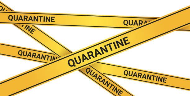 epidemic MERS-CoV quarantine caution on yellow warning tape coronavirus infection wuhan 2019-nCoV pandemic health risk concept horizontal epidemic MERS-CoV quarantine caution on yellow warning tape coronavirus infection wuhan 2019-nCoV pandemic health risk concept horizontal vector illustration quarantine stock illustrations