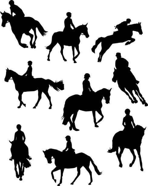 pferdesport dressur gliederung - reiter stock-grafiken, -clipart, -cartoons und -symbole