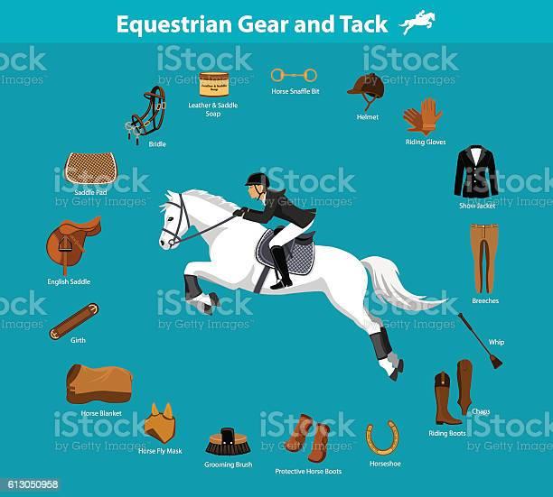 Equestrian gear and tack vector id613050958?b=1&k=6&m=613050958&s=612x612&h=dczngqwmt fwvic4xlckbz20jqtntffgsa eghk0pj4=