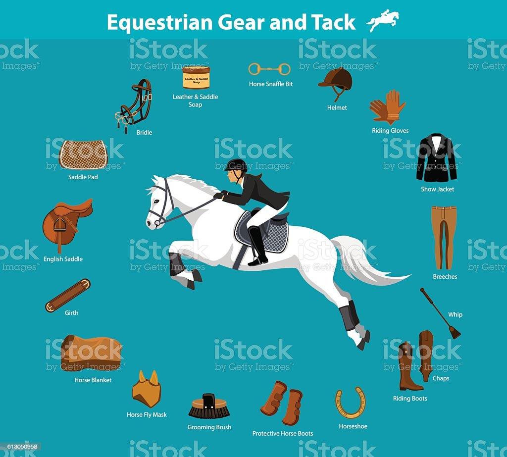 Equestrian gear and tack vector art illustration