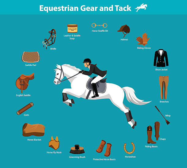 equestrian gear and tack - 乗馬点のイラスト素材/クリップアート素材/マンガ素材/アイコン素材
