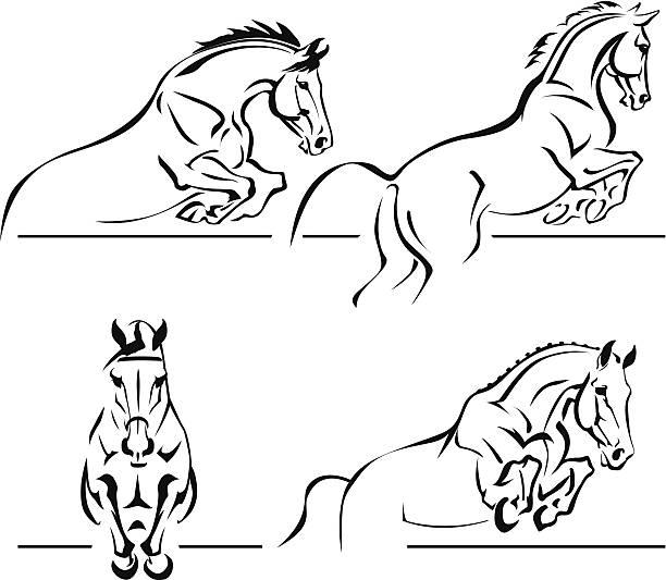 bildbanksillustrationer, clip art samt tecknat material och ikoner med equestrian jumping - häst tävling
