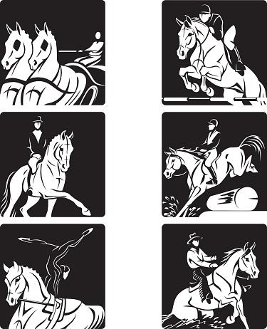 Equestrian olympics 2