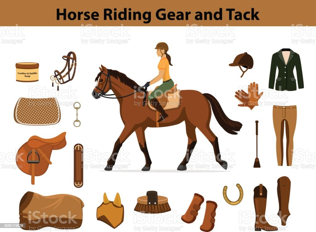 Equestrian Sport Equipment Set Horse Riding Gear And Tack Accessories Stock Illustration Download Image Now Istock