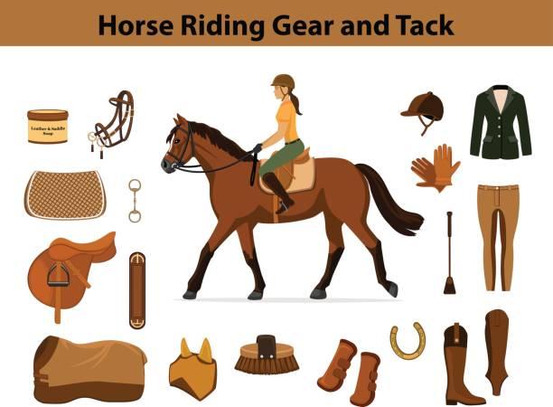 pferdesport unterhaltungsausstattung. getriebe und zaumzeug zubehör reiten. - funktionsjacke stock-grafiken, -clipart, -cartoons und -symbole