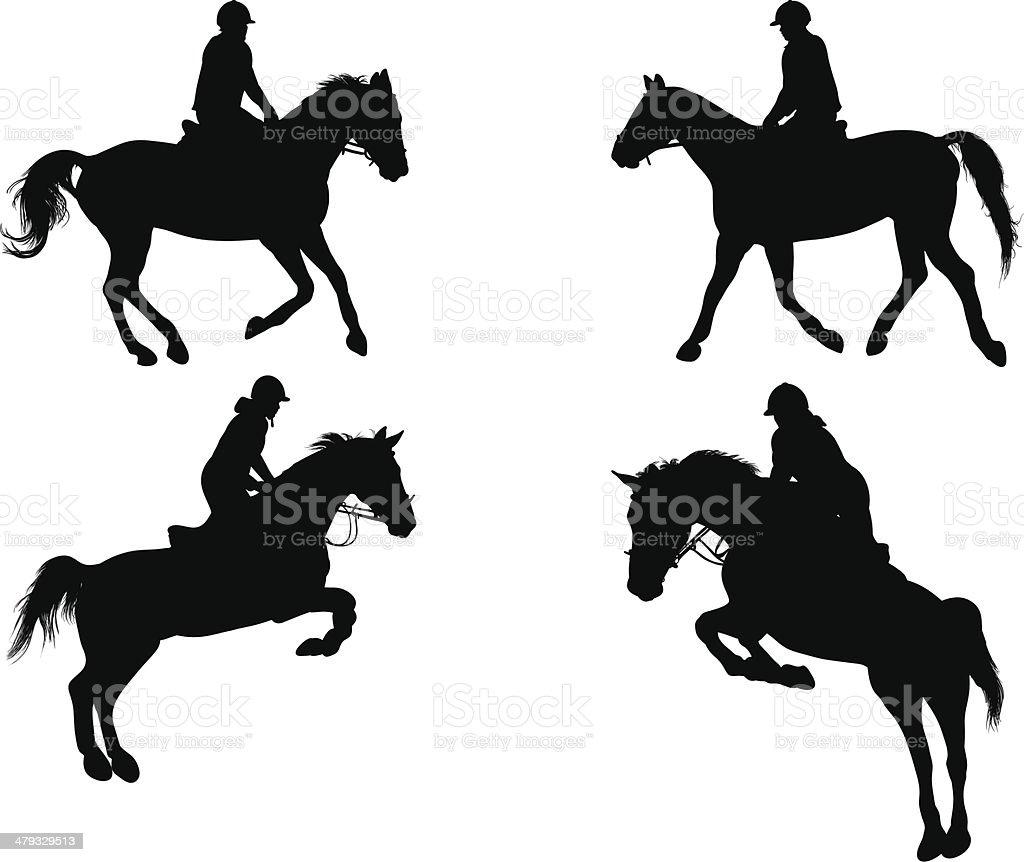 Equestrian vector art illustration