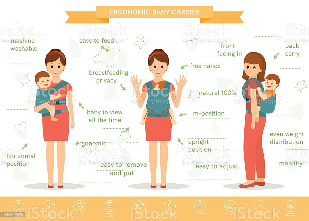 Ergonomic baby carrier infographic vector art illustration