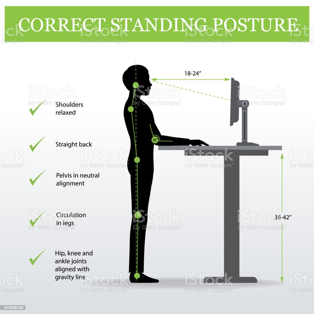 ergonomic. Correct standing posture and Height adjustable table vector art illustration