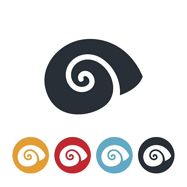 escargot icon - snail stock illustrations