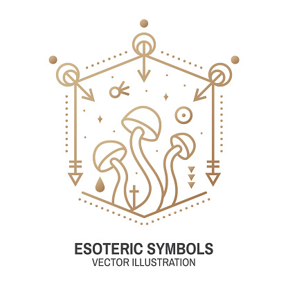 Esoteric symbols. Vector. Thin line geometric badge. Outline icon for alchemy or sacred geometry. Mystic and magic design with alchemy symbols and mushrooms.