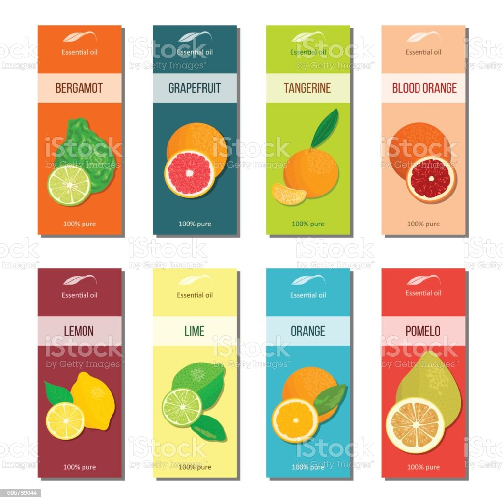 Essential oil labels collection. Bergamot, lemon, grapefruit, lime, mandarin, pomelo, orange, blood orange vector art illustration