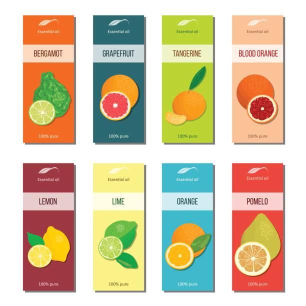 illustrations, cliparts, dessins animés et icônes de collection de huile essentielle de labels. bergamote, citron, pamplemousse, citron vert, mandarine, pomelo, orange, orange sanguine - infusion pamplemousse