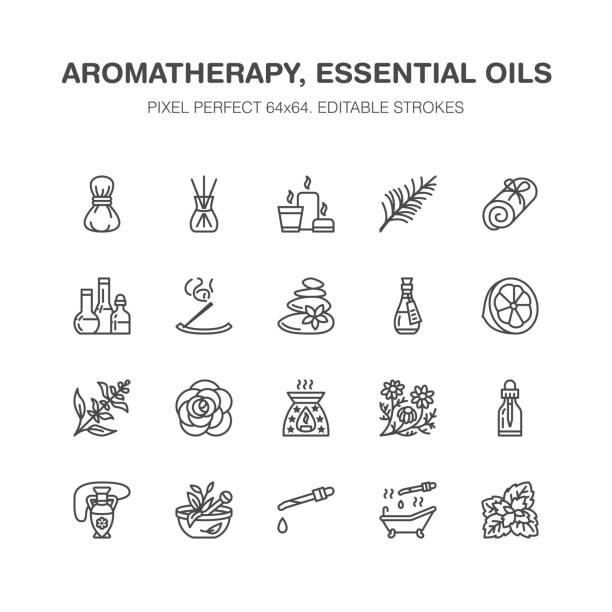 Essential oils aromatherapy vector flat line icons set. Elements - aroma therapy diffuser, oil burner, candles, incense sticks. Linear pictogram editable strokes for spa salon. Pixel perfect 64x64 Essential oils aromatherapy vector flat line icons set. Elements - aroma therapy diffuser, oil burner, candles, incense sticks. Linear pictogram editable strokes for spa salon. Pixel perfect 64x64. lavender plant stock illustrations