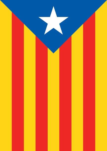 estelada blava bayrak bayrak catalonia bağımsızlık arka plan - lleida stock illustrations