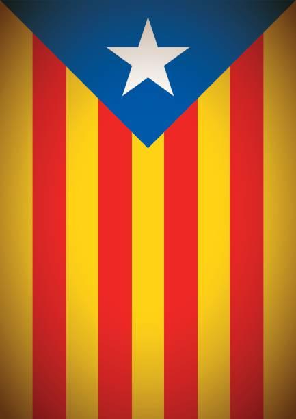 estelada blava bayrak bayrak catalonia bağımsızlık secession arka plan - lleida stock illustrations