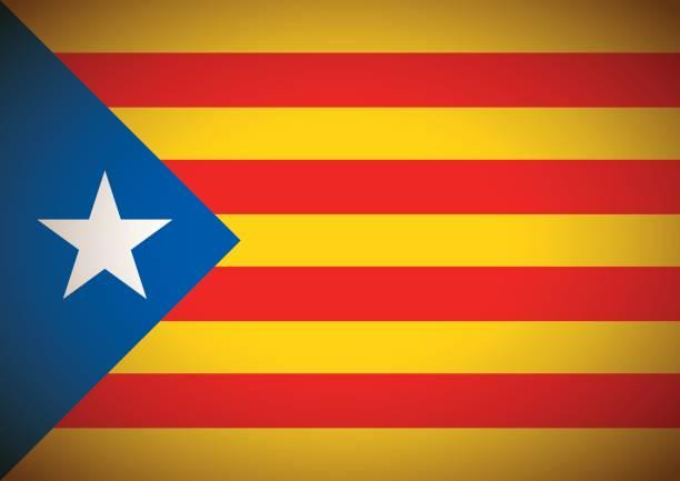 estelada blava bayrak catalonia independentism referandum arka plan - lleida stock illustrations