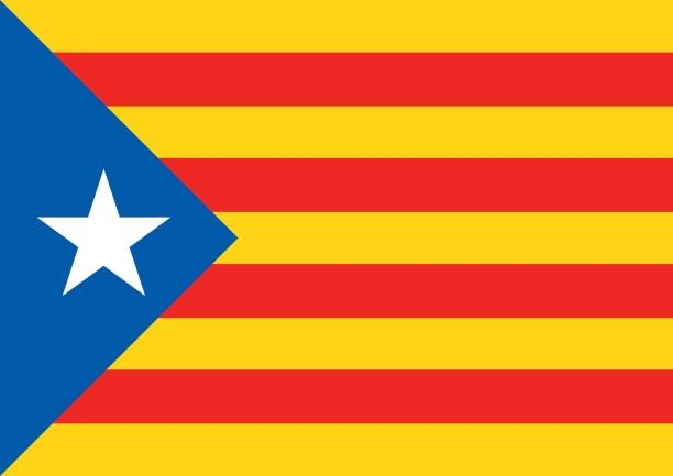 estelada blava bayrak catalonia referandum arka plan - lleida stock illustrations