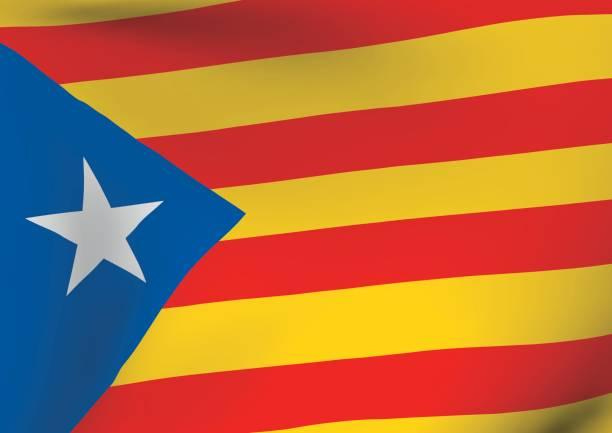 estelada blava bayrak sallayarak catalonia indenpendentism sembolü - lleida stock illustrations