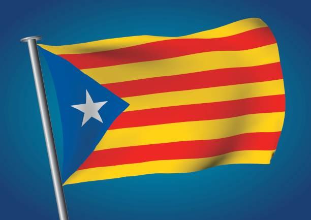 estelada bayrak sallayarak üzerinde gökyüzü catalona bağımsızlık - lleida stock illustrations