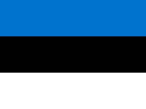 stockillustraties, clipart, cartoons en iconen met vlag van estland - estland