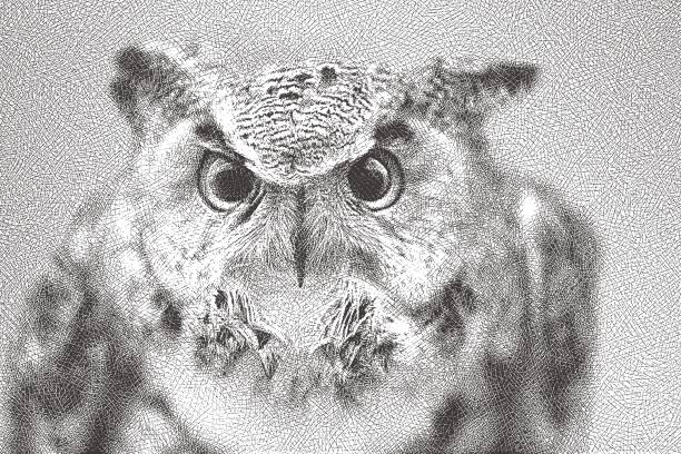 etching illustration of an angry great horned owl - great horned owl stock illustrations, clip art, cartoons, & icons