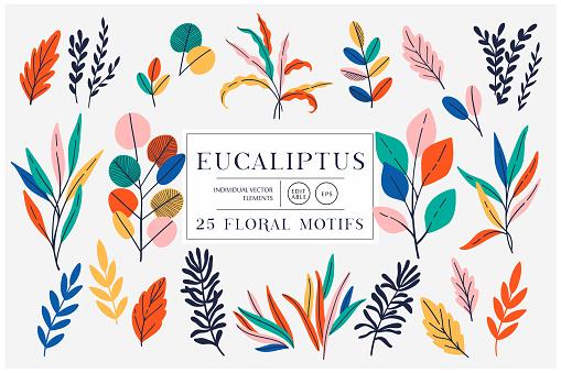 Eucaliptus set isolated on bright background