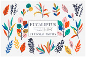 Eucaliptus set isolated on bright background. Vector modern design for t-shirt,print material,cloth and textile. For invite and wedding card,wallpaper,poster,greeting card