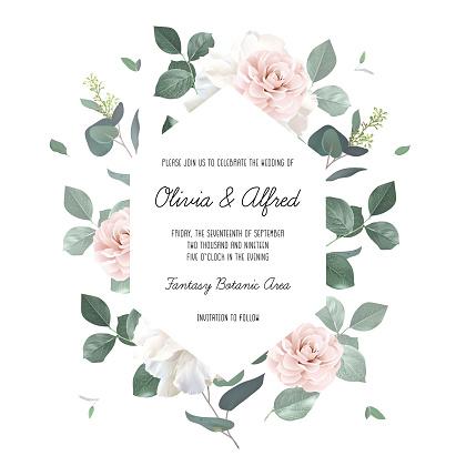 Eucalyptus and pale camellia, peony vector design invitation frame